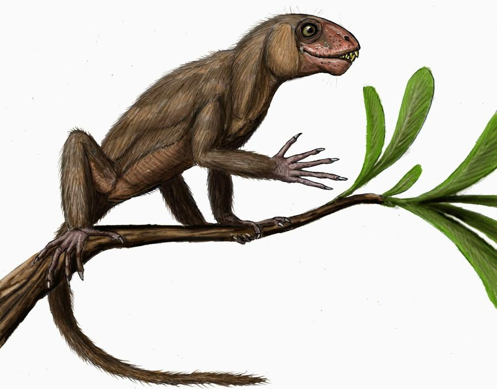 6. Суминия (Кировская область). динозавры, доисторические животные, животные, история