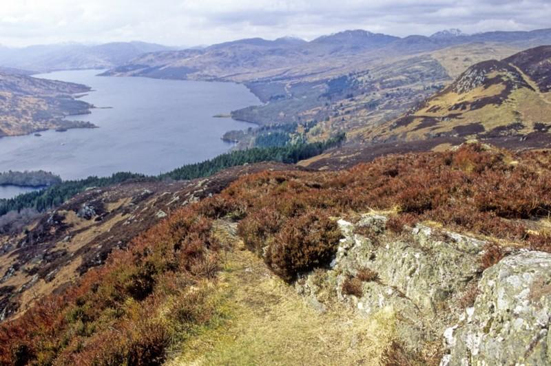 Названа самая красивая страна мира Rough Guide, голосование, канада, конкурс, куда поехать, опрос, самые красивые страны, шотландия