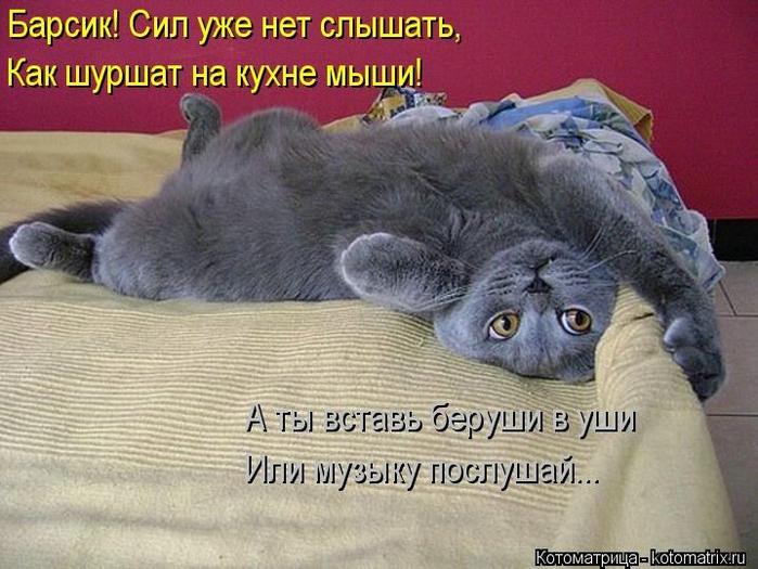 kotomatritsa_B (700x525, 270Kb)