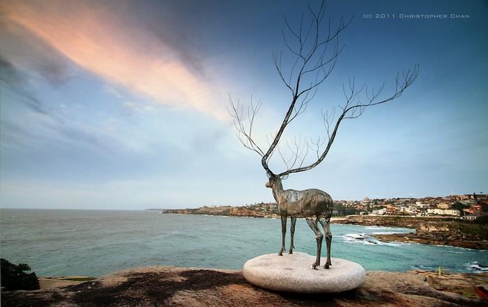 Интересные и красивые фото от Christopher Chan