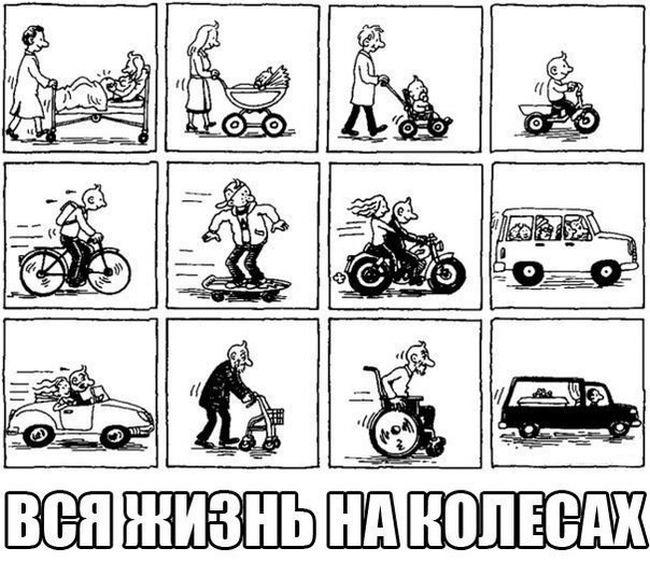 Автоюмор для автомобилистов и пешеходов (41 фото)