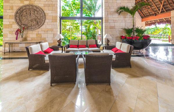 Растения в гостиной, близкие по цвету интерьеру