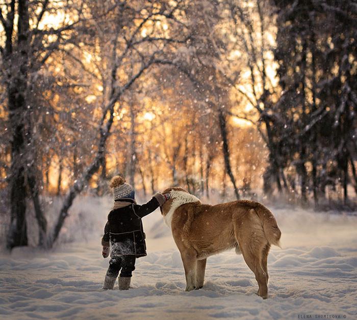 Еще один рассвет вместе  дружба, ребенок, собака