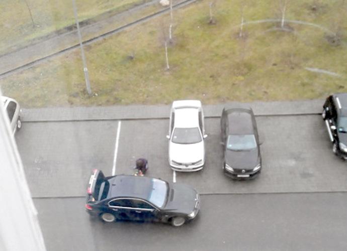 Сначала король газона, затем король парковки!