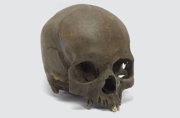 Череп жертвы ритуального убийства найден в Англии