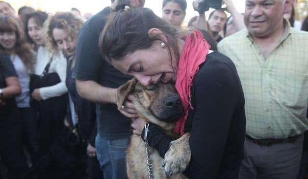 Эта девушка нашла своего пса, спустя 2 недели, после наводнения в Ла-Плата, Аргентина.