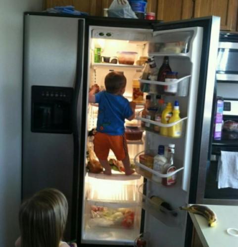 Шпион в холодильнике