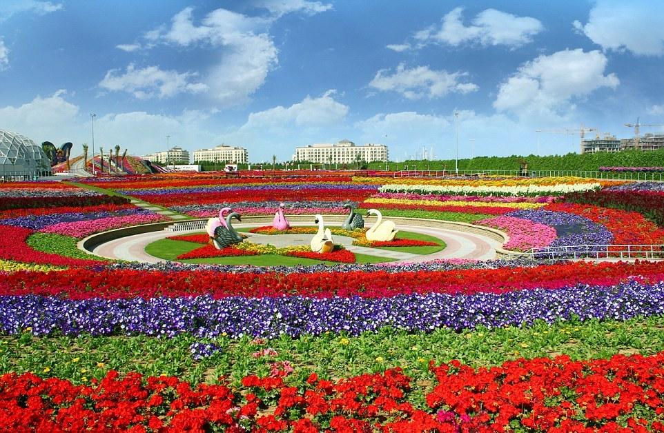 Чудо Сад в Дубае