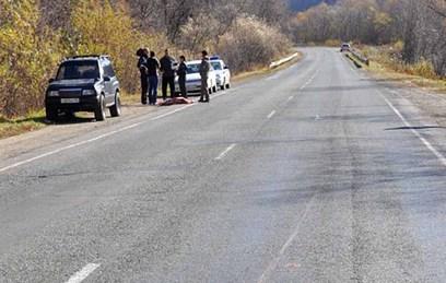В Приморье под колесами автомобиля погиб краснокнижный леопард