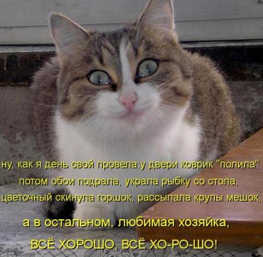 dd718eb41adae1ddcea18f11c81_prev