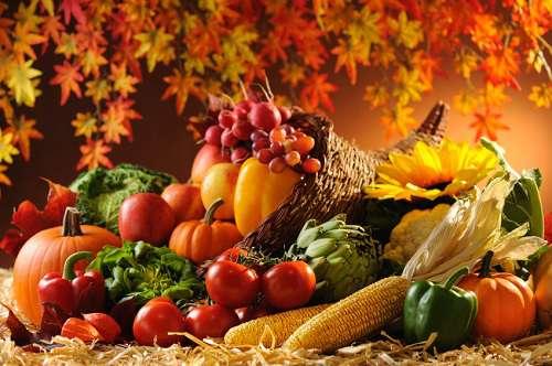 Сентябрьские заботы в огороде