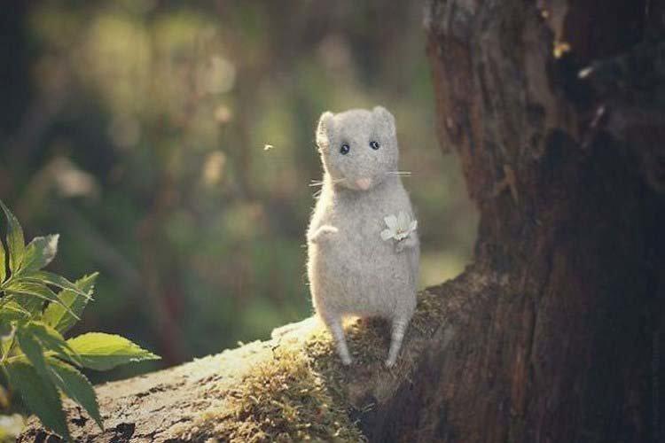 Миниатюрные и трогательные войлочные игрушки Анастасии Жарковой Анастасия Жаркова, войлочные игрушки, игрушка, красота, своими руками
