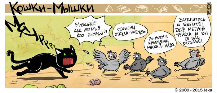 catsrats1