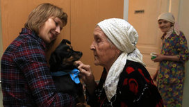 Наперекор кризису: собаки-терапевты ищут спонсоров