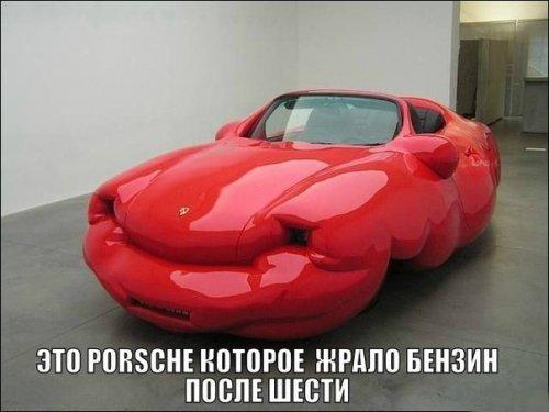 Прикольные картинки на автот…
