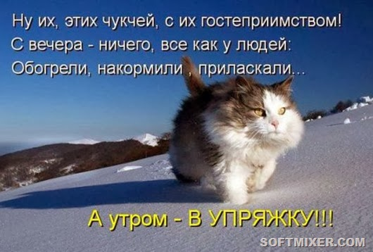 703bd7621b4d81545afb827c101_prev