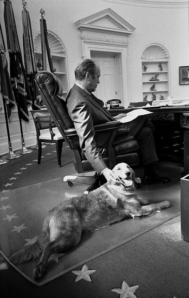 14. Джеральд Форд и его золотистый ретривер Либерти в Овальном кабинете. 1974 год. история, неизвестные фото, фото