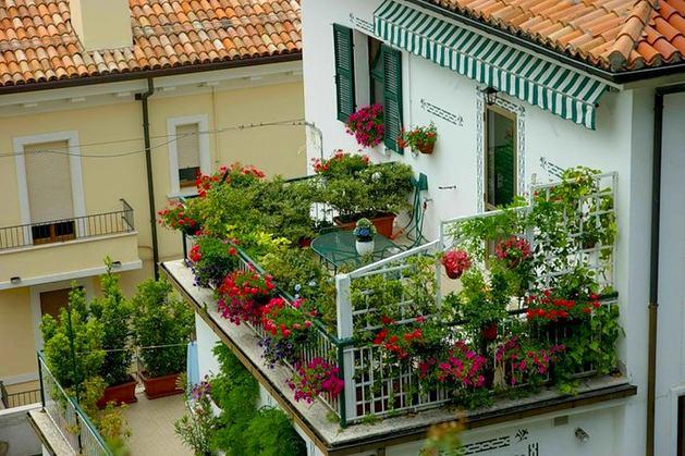 Новокузнецк,конкурс,лучший двор,лучший балкон-цветник,благоустройство,жкх,все новости