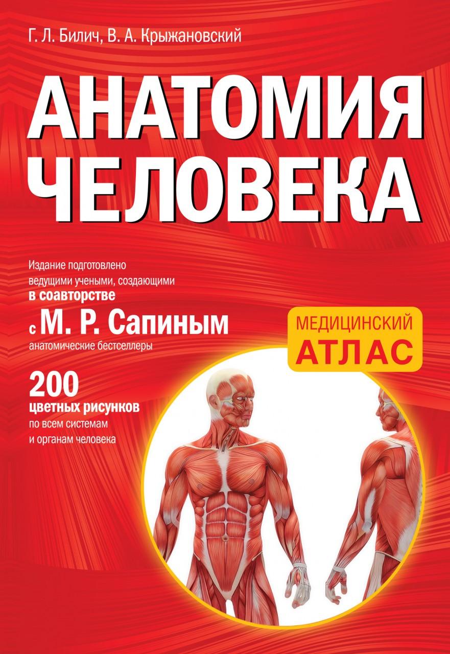 Атлас анатомии человека 4
