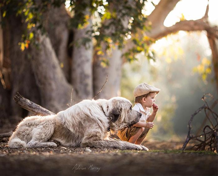 Совместная прогулка по лесу  дружба, ребенок, собака