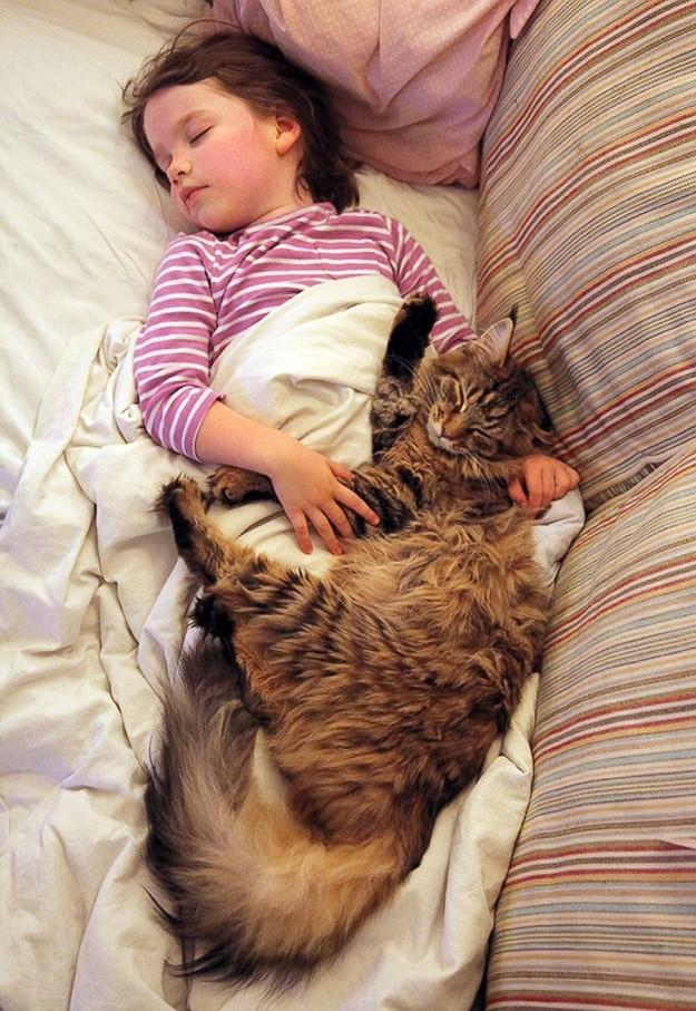 IrisandThula07 Как кошка Тула помогает девочке с аутизмом