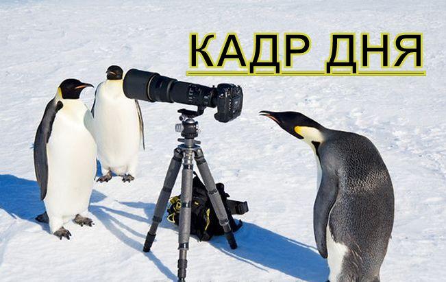 Кадр дня: НедоПрыг!))