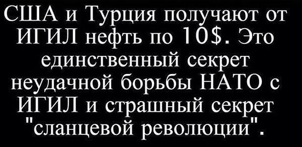 Война. Алексей Зотьев