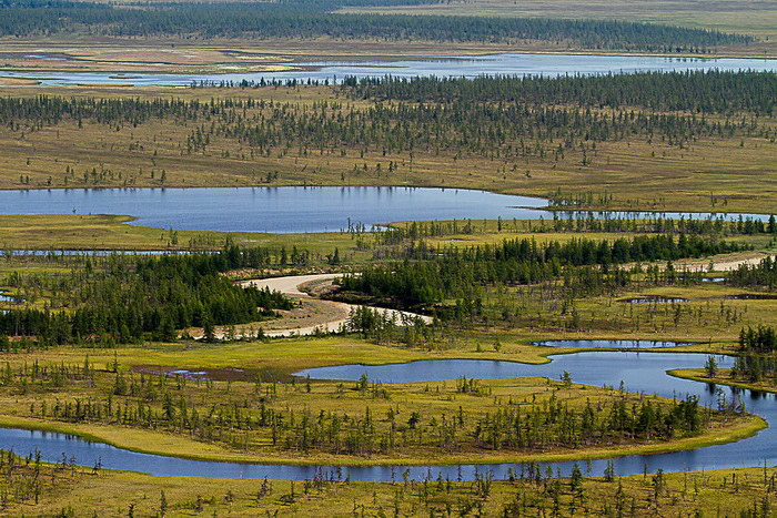 Озеро Таймыр: жемчужина крайнего севера России