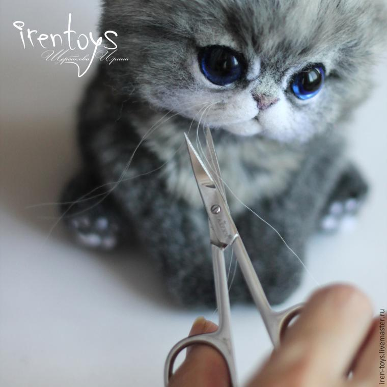 Усы кота своими руками