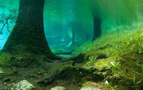 Необычное озеро в Австрии ....