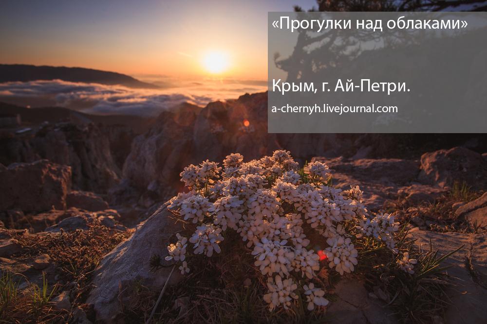 """""""Прогулки над облаками"""" Крым, г. Ай-Петри"""