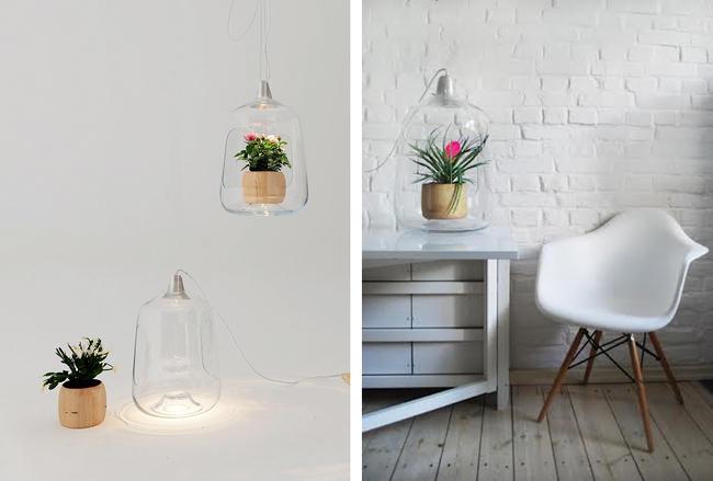 Лампы для комнатных растений