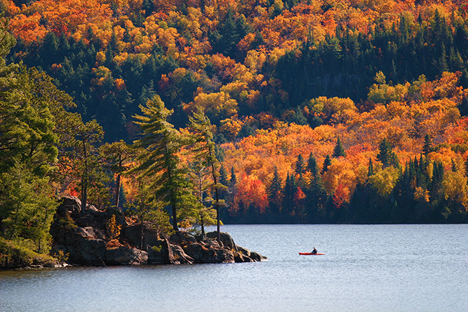 Знеменитая канадская осень в Алгонкинском провинциальном парке