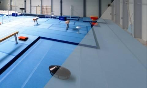 Благовещенску подарят новейшее гимнастическое оборудование стоимостью 12 миллионов рублей