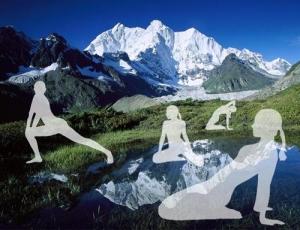 Секреты здоровья тибетской медицины