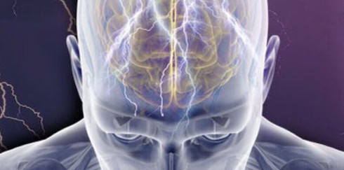 10 заблуждений о нервной системе