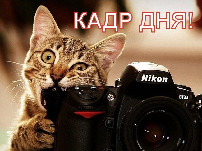 Кадр дня: Вот такааая любофффь!))
