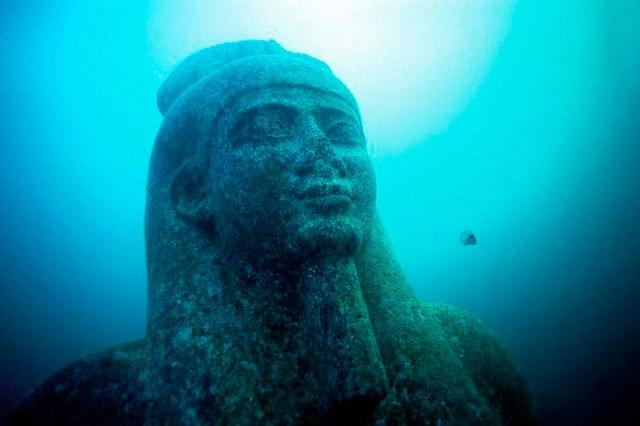 Завораживающие чудеса подводного мира