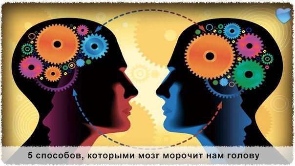 Интересное о мозге :) ... - Заставляет серьёзно задуматься о существовании свободы воли...
