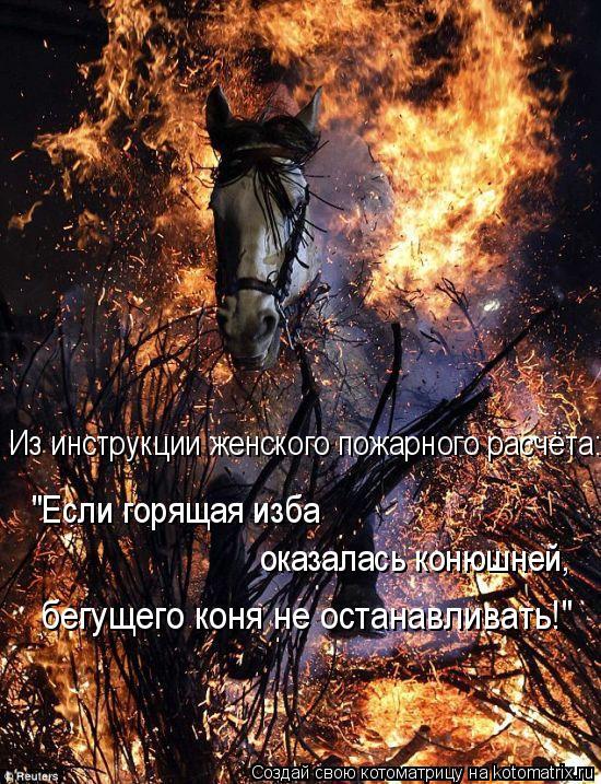 """Котоматрица: Из инструкции женского пожарного расчёта: """"Если горящая изба  оказалась конюшней, бегущего коня не останавливать!"""""""