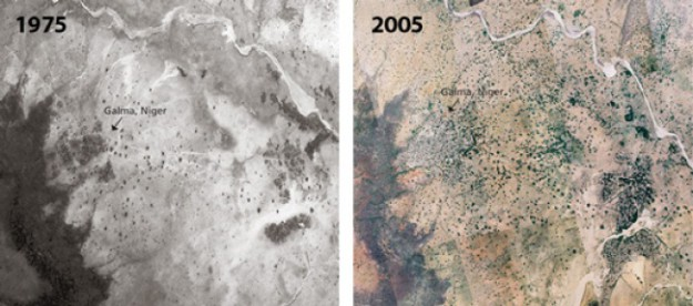 невероятная история пустыня