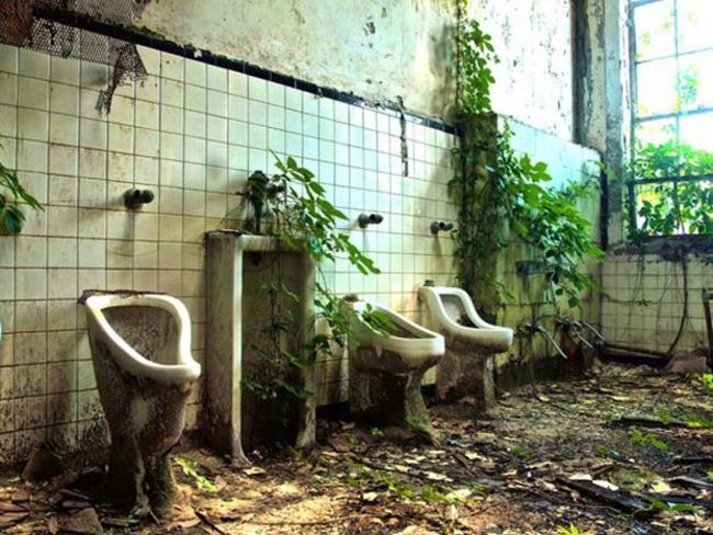Школьный туалет в Атланте заброшенное, природа, разрушение, цивилизация