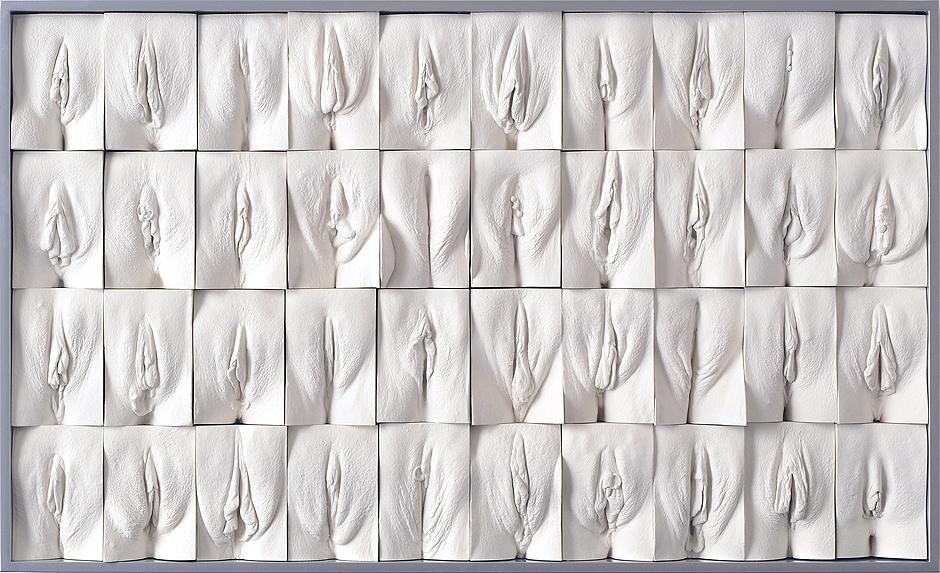Вид женских органов фото фото 248-955