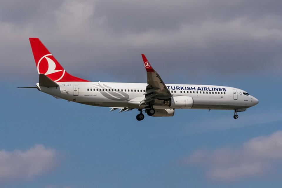 Turkish Airlines объявила о прекращении полетов в Шарм-эш-Шейх