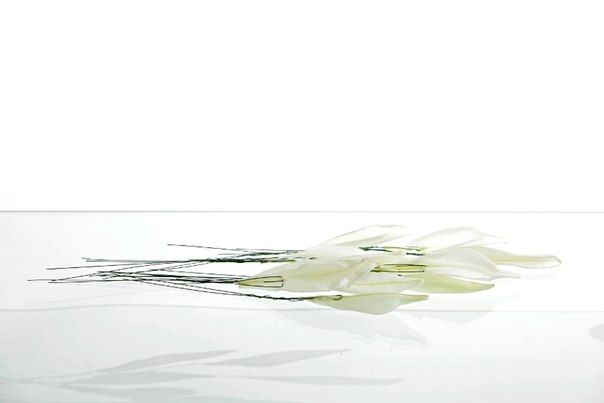 Мастер-класс: Красавица - лилимелия от Флорист.ру