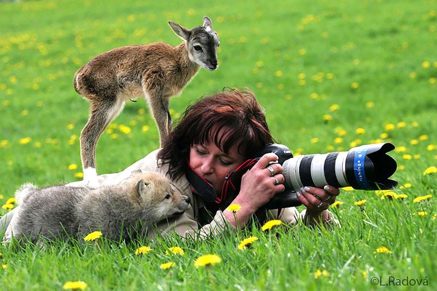 Фотографы дикой природы.