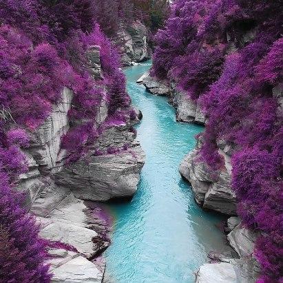 Алтай. Горная река в цветах багульника.