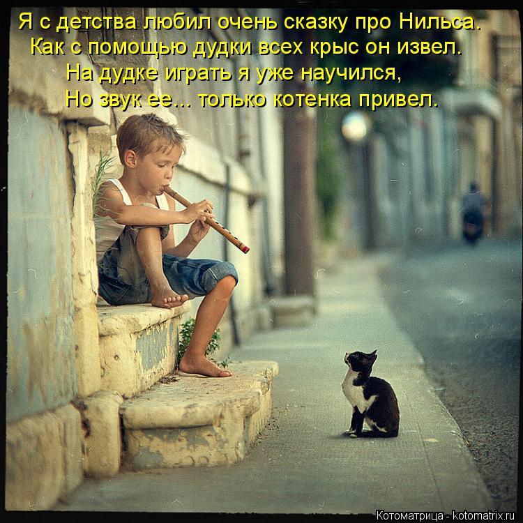 Котоматрица: Я с детства любил очень сказку про Нильса. Как с помощью дудки всех крыс он извел. На дудке играть я уже научился, Но звук ее... только котенка
