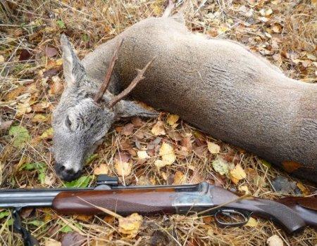 Оружие и патроны для охоты н…