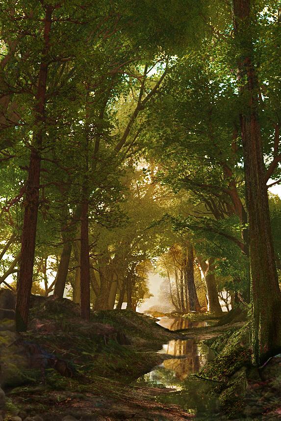September Woods